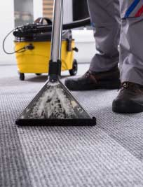 Carpet Cleaning at Dial a Cleaning