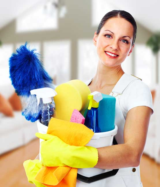 Professional Cleaners at Dial a Cleaning