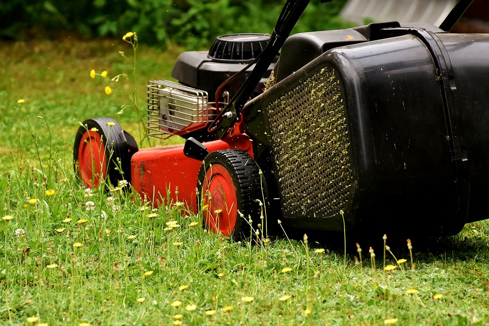 Lawn Mowing Brisbane at Dial a Cleaning