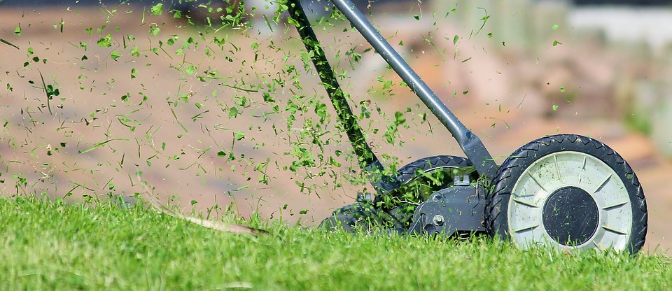 Lawn Mowing Brisbane at Dial Cleaning